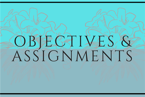 Objectives and Assignments