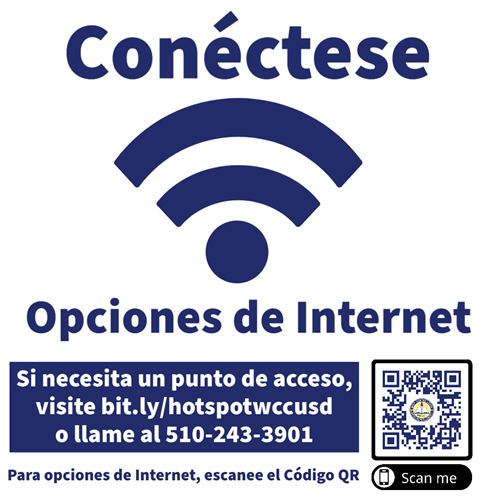 Spanish Internet connectivity