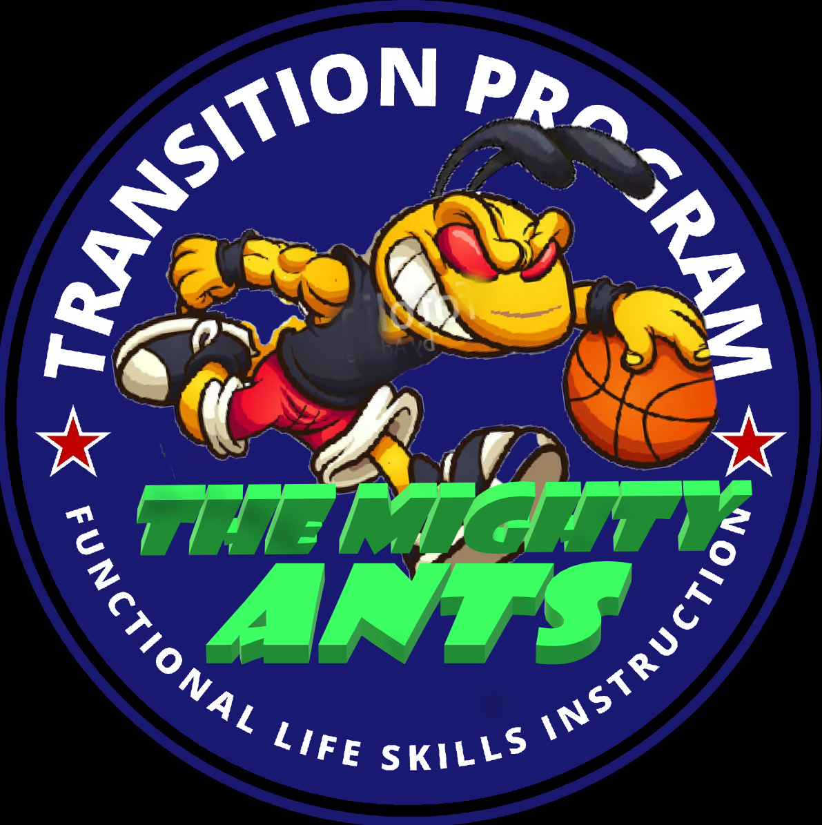 Transition Program on the move...