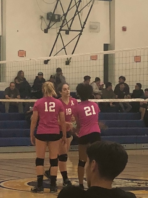 Volleyball Girls Roll into TCAL Finals